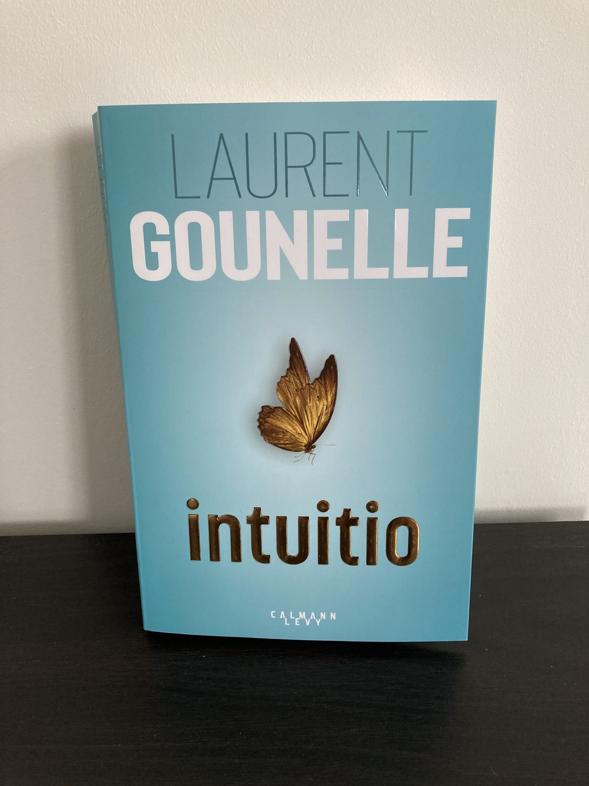 Couverture d'iIntuitio